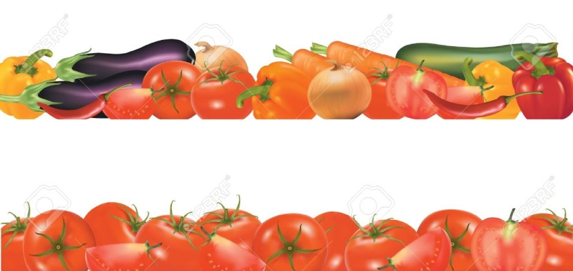 Vegetable Design Border Isolated On White Vector Royalty Free