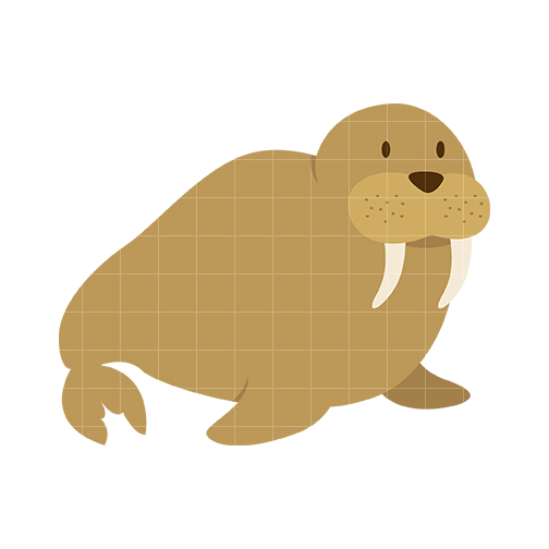 Walrus Clipart - Clipartion.com