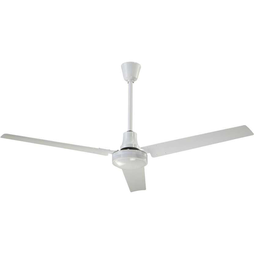 White Ceiling Fan Alegoo Com