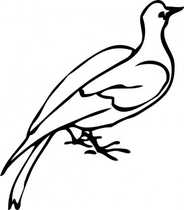 White Dove Outline Free Vector For Free Download About 4 Free