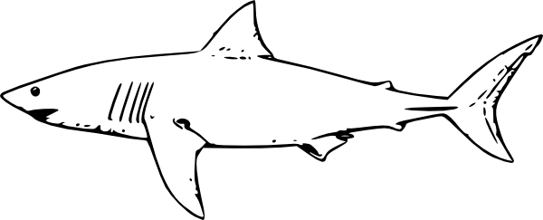 White Shark Clip Art Free Vector 4vector
