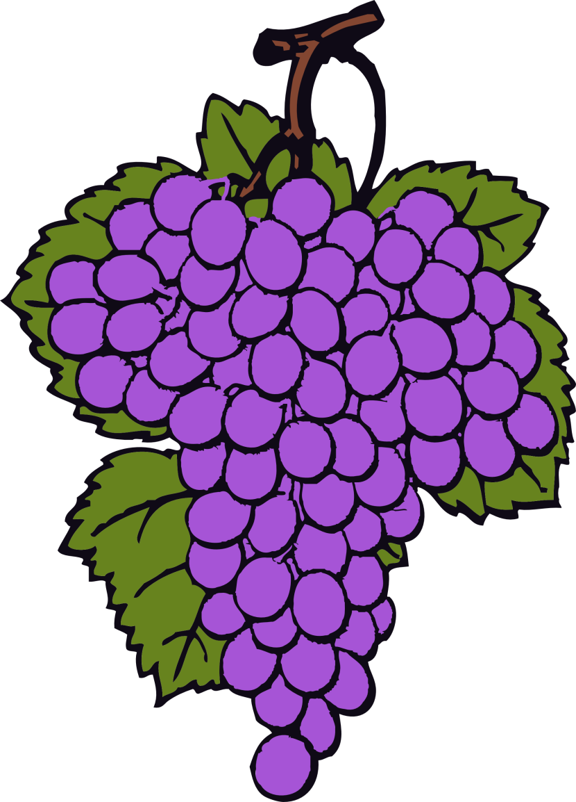 Wine Grapes Free Clipart Images