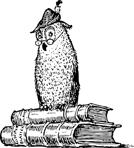Wise Owl On Books Clip Art At Vector Clip Art Online