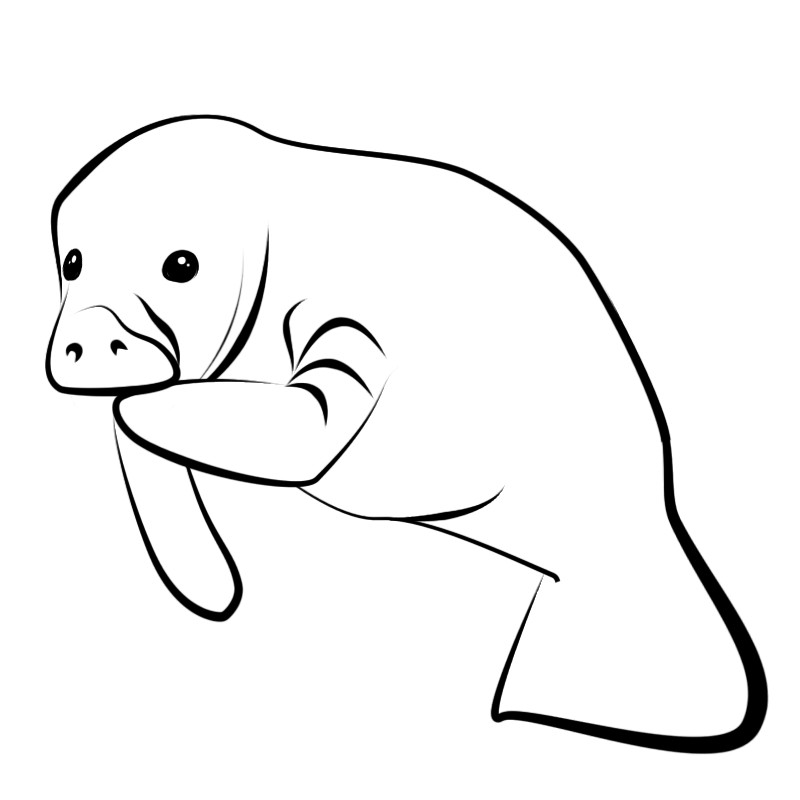 Yes The Manatee Is Mine Aswell Clipart Free Clip Art Images