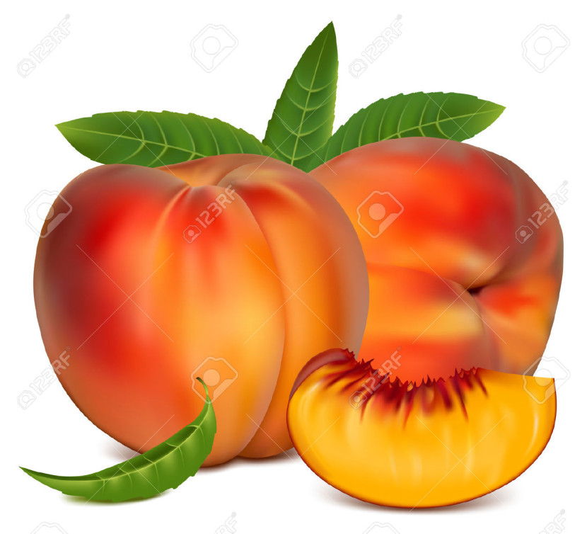 Best Peach Clip Art 16736 Clipartion Com