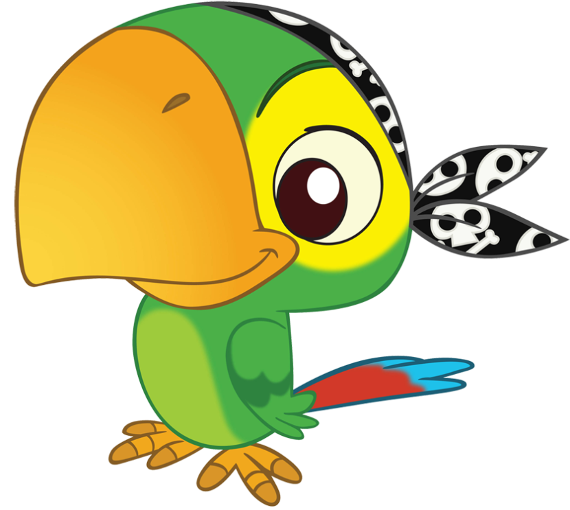 Bird Pirate Clip Art