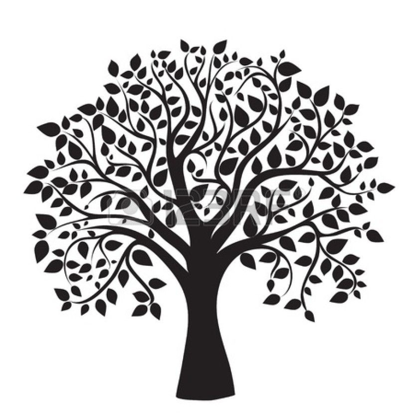 Black Family Reunion Clip Art Hd Family Tree Images Stock