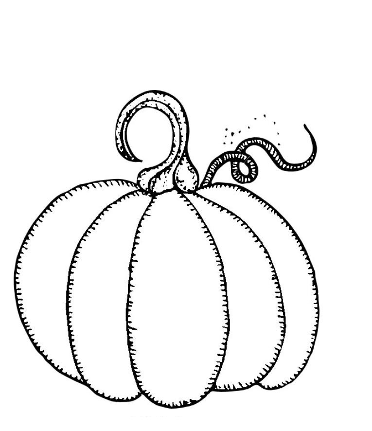 printable blank pumpkin coloring pages - photo#11