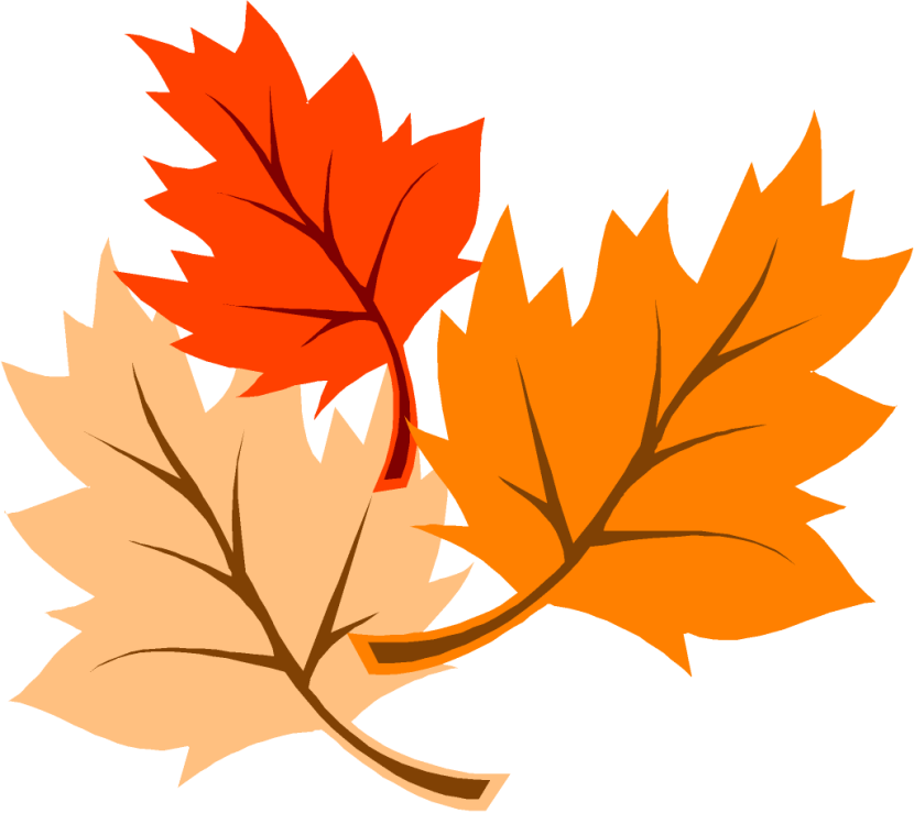 Cartoon Fall Leaves