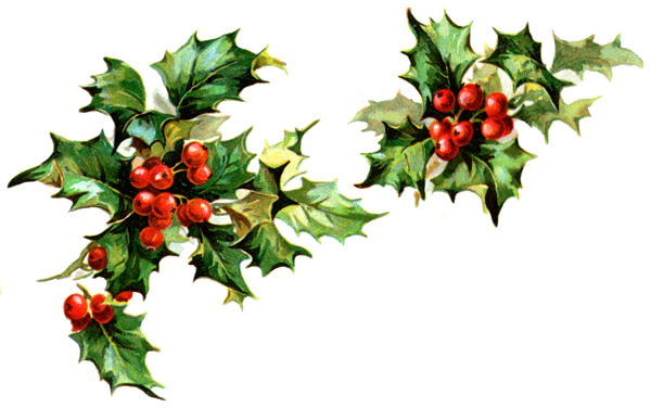 Christmas Holly Clip Art Best Template Collection