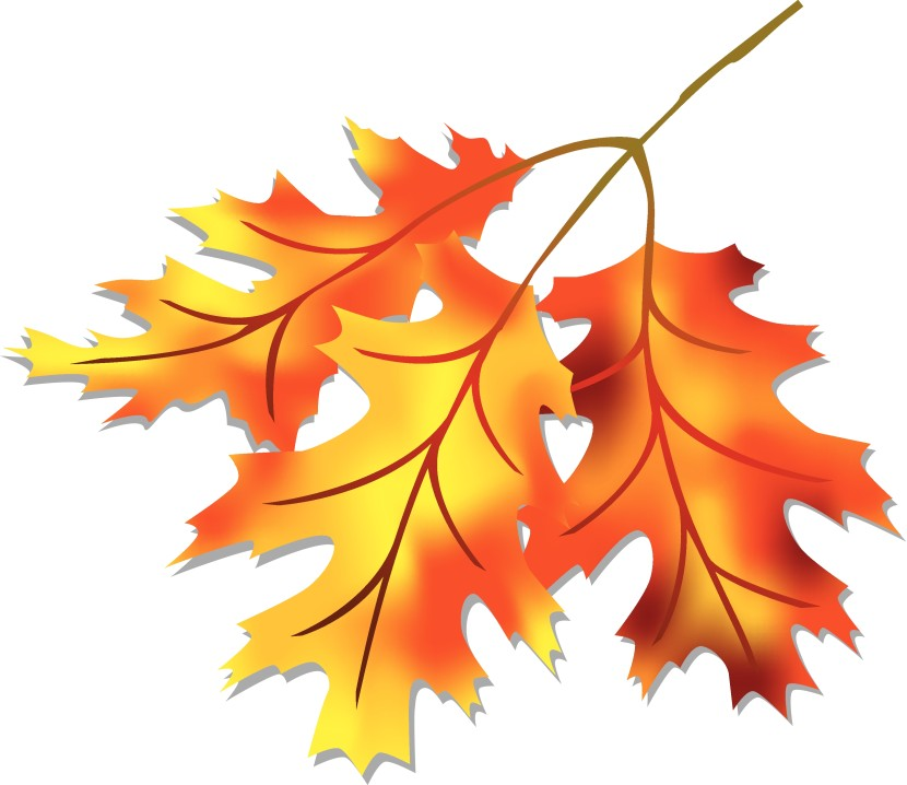 Cliparti1 Fall Leaf Clip Art