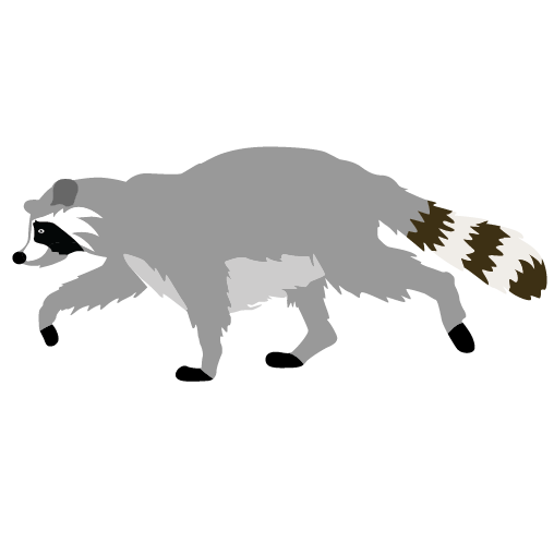 Cute Raccoon Clipart Animal Clip Arts