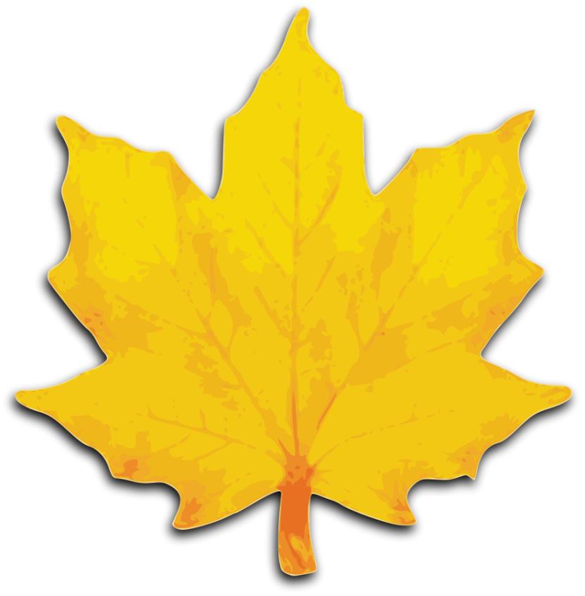 Fall Leaf Clipart Outline Free