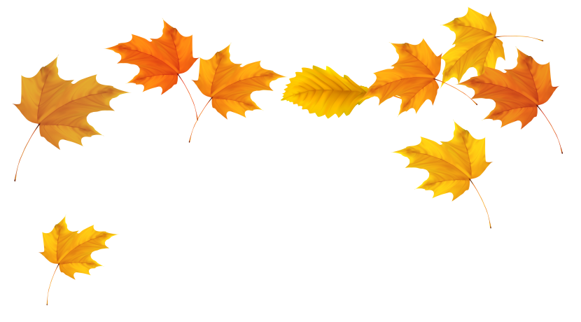 Fall Leaves Picture Png M 0