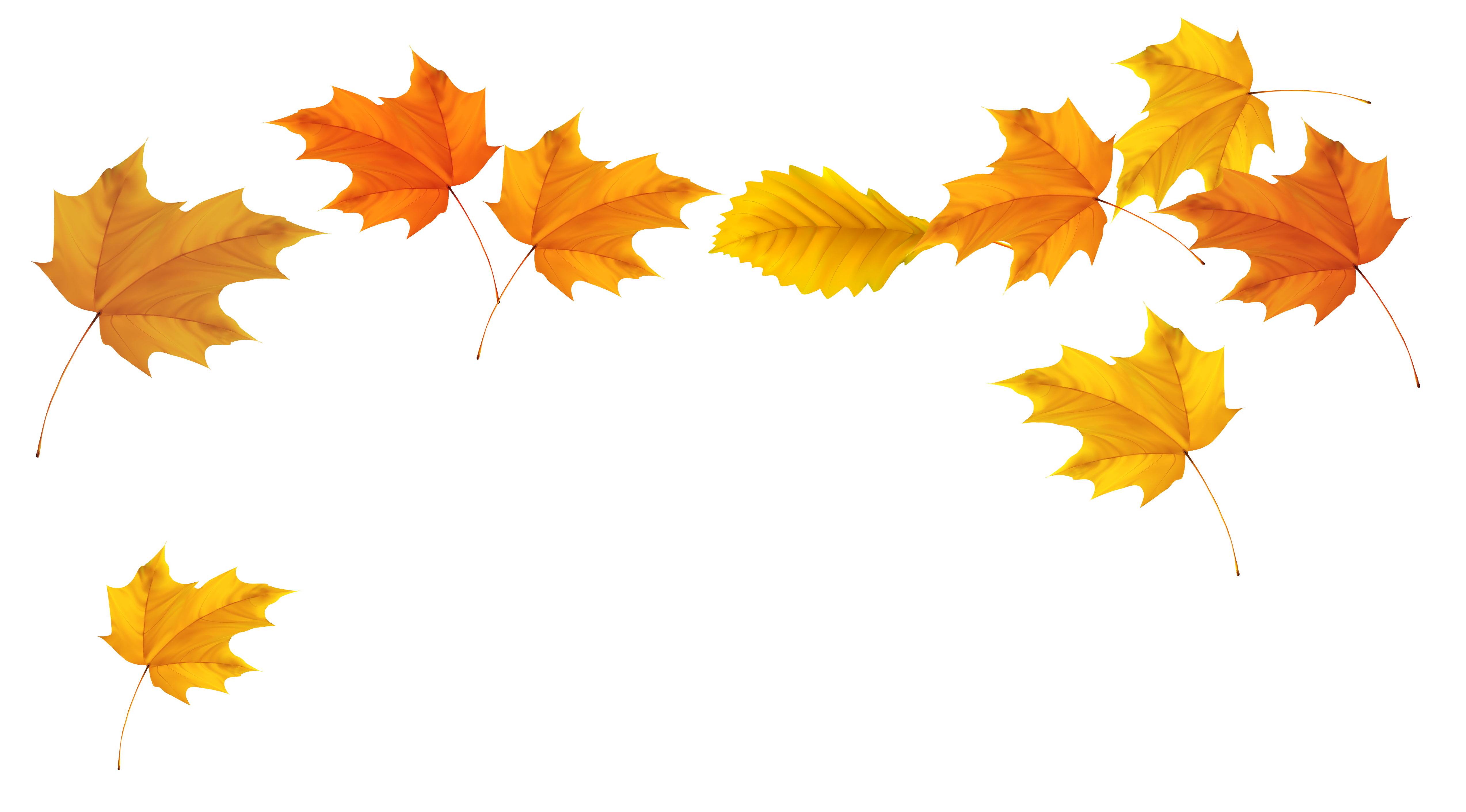 Best Fall Leaves Clipart #22486 - Clipartion.com