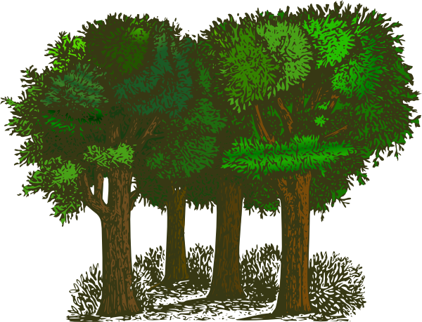 Best Forest Clipart #24157 - Clipartion.com
