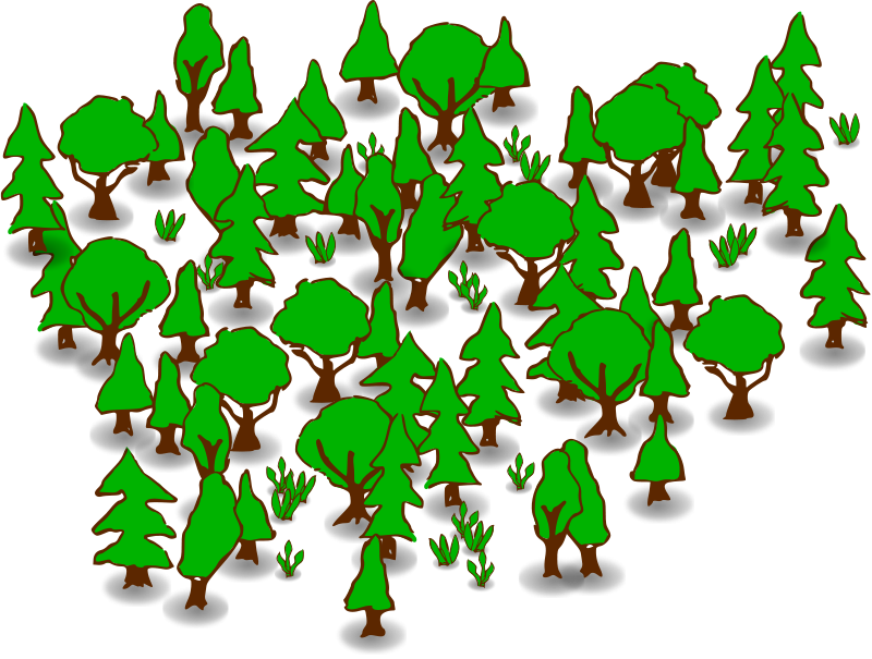 Forest Png Forest Clipart