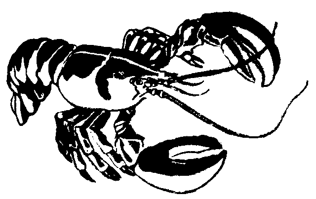 Lobsterman Clipart Free Lobster Outline