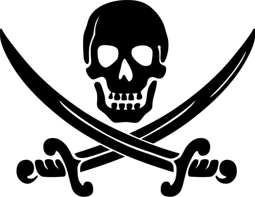 Pirate Logo Full Page Flags