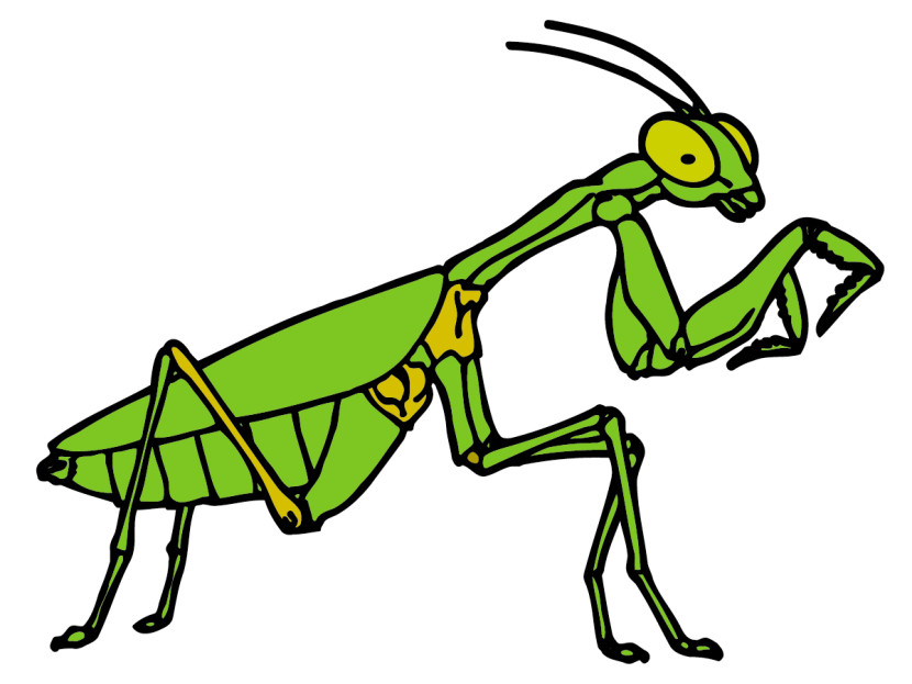 Praying Mantis Clip Art Free Free