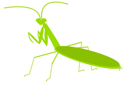 Praying Mantis Clip Art Free