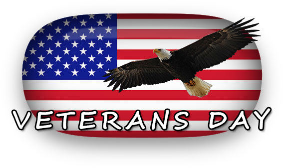Veterans Day Eagle American Flag