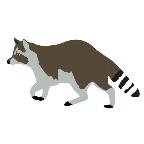 Walkning Raccoon Clipart Animal Clip Arts