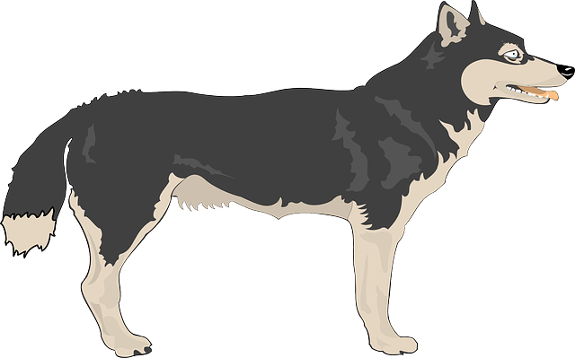 Wolf Clip Art Images Free For Commercial Use