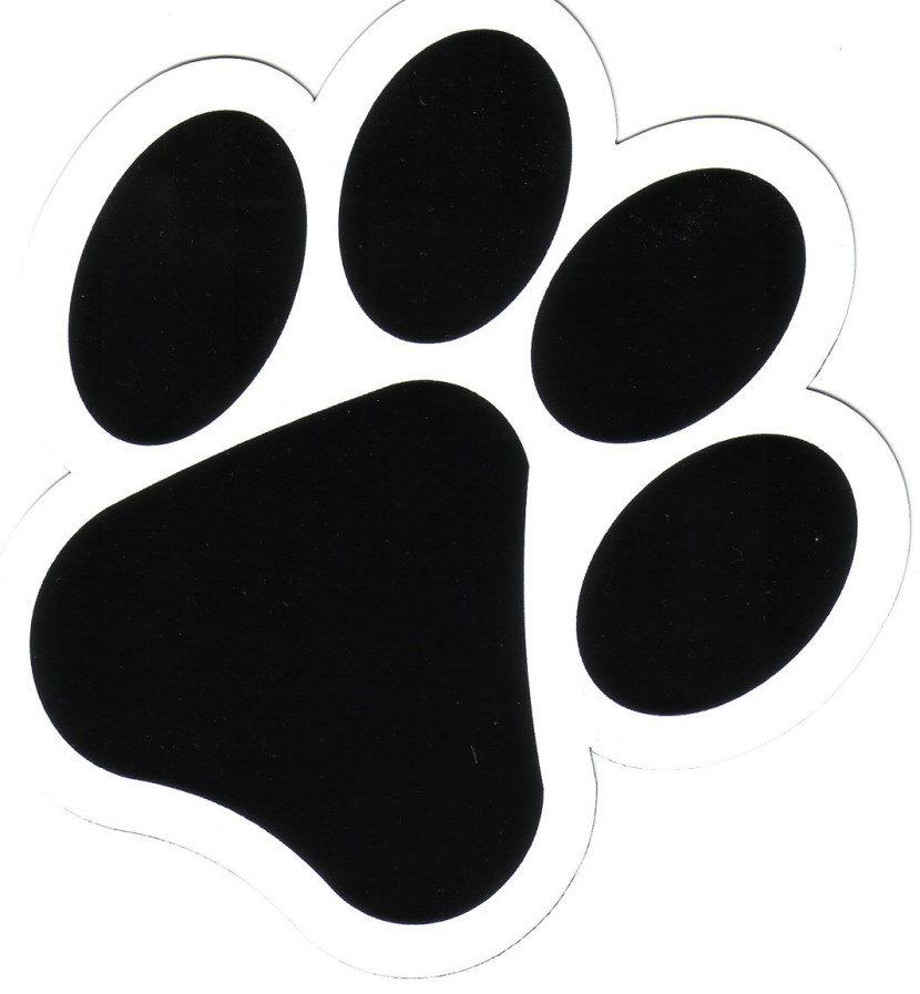 Dog Paw Print Free Download Free