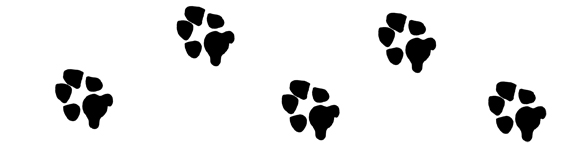 Dog Paw Print Paw Print Graphics For Projects Dog Paw