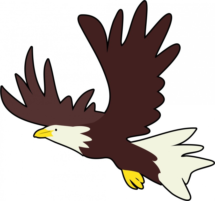 Eagle Clipart Best Cliparts For You
