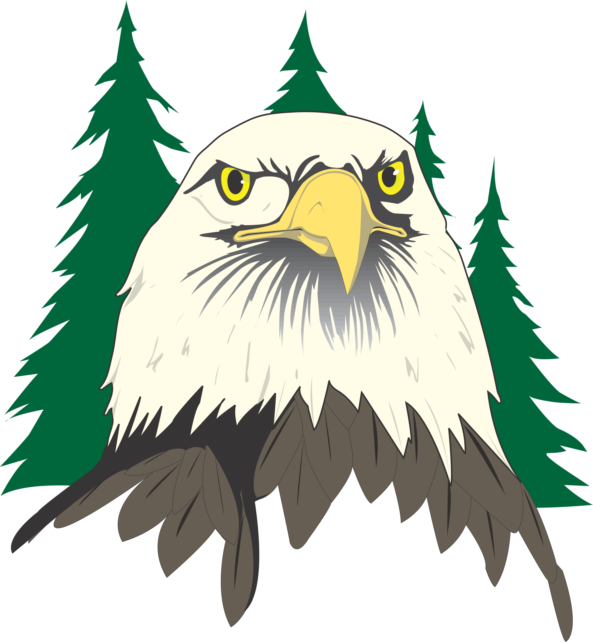 Best Eagle Clipart #25974 - Clipartion.com