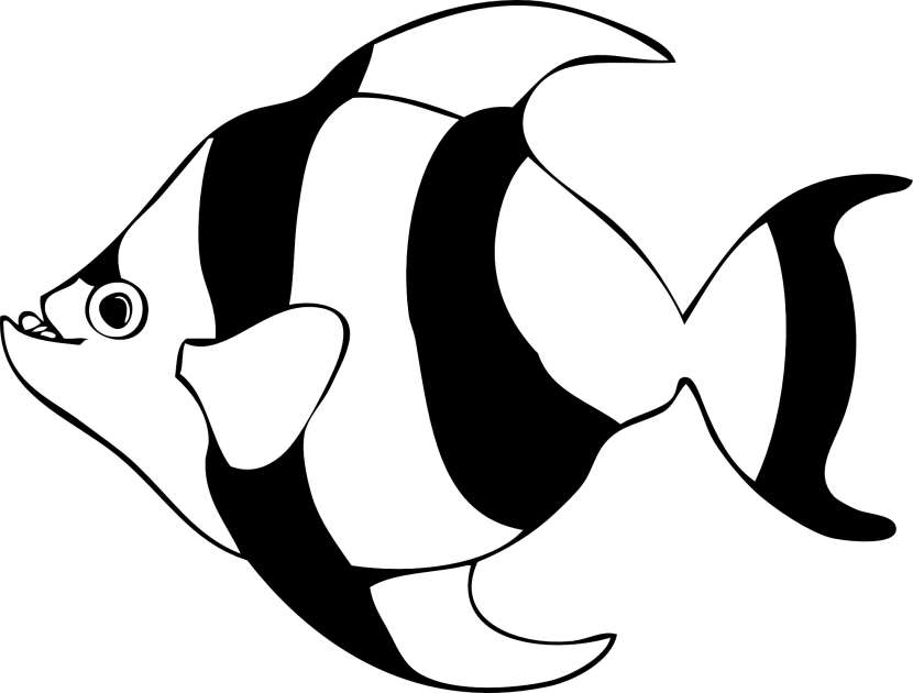 Fish Outline Clipart Black And White Free