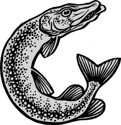 Fish Outline Free Vector