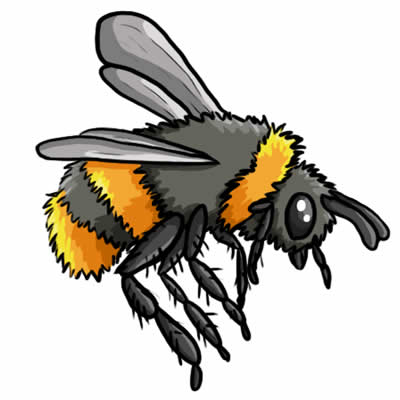 Free Bee Drawings And Colorful Images