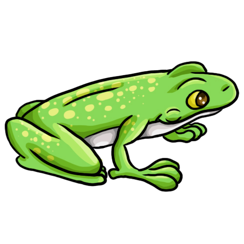 Free Frog Drawings And Colorful Images