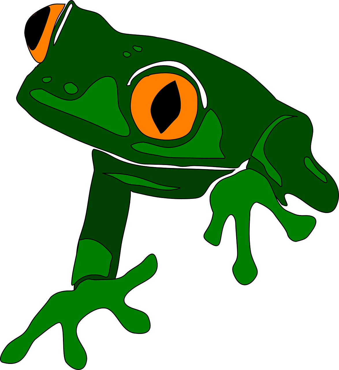 Frog Images Free For Commercial Use