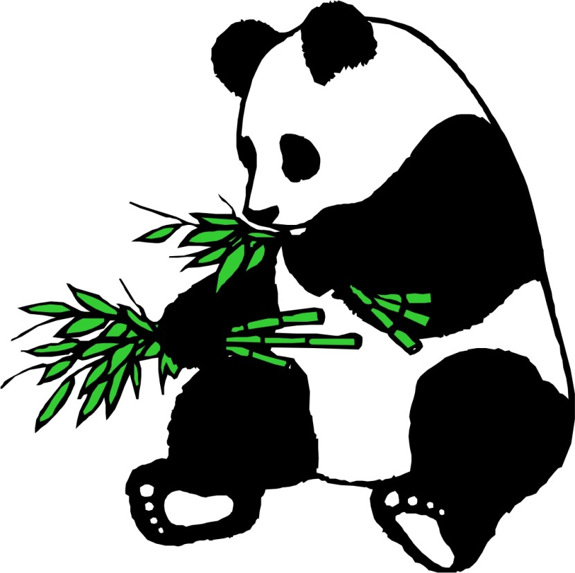 Clip Art Panda Bear Clip Art best panda clipart 26288 clipartion com head free image of eating bamboo