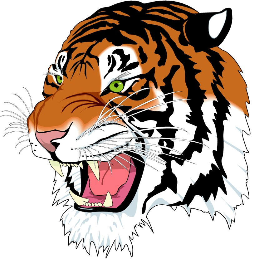 Image Tiger Head Clipart