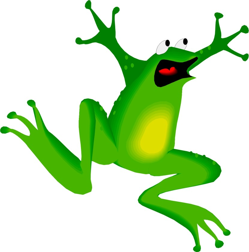 Leaping Frog Decals