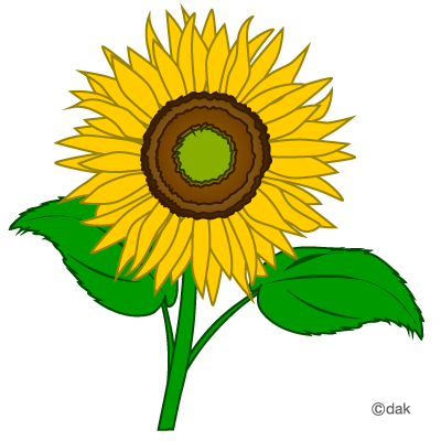Pretty Sunflower Coloring Page Free
