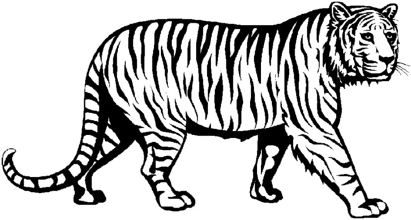 Tiger Head Black And White Free Clipart