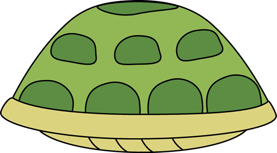Turtle Shell Image