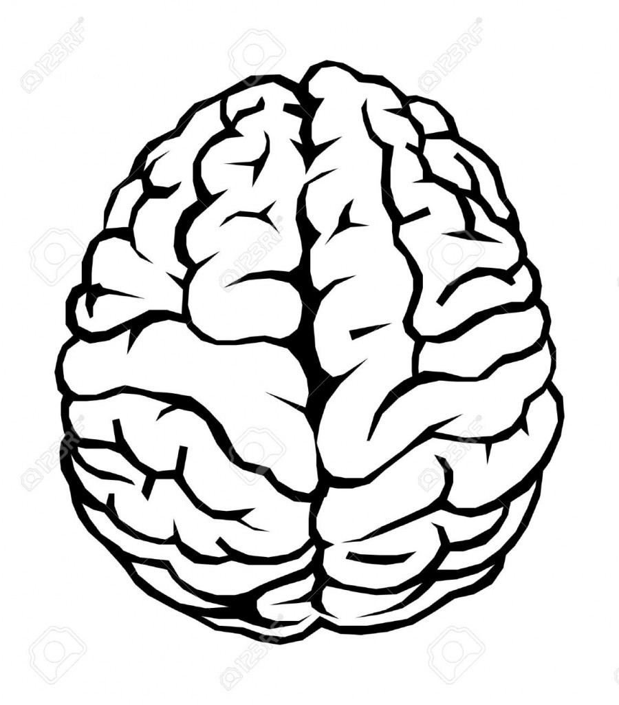 best brain clipart black and white  28898