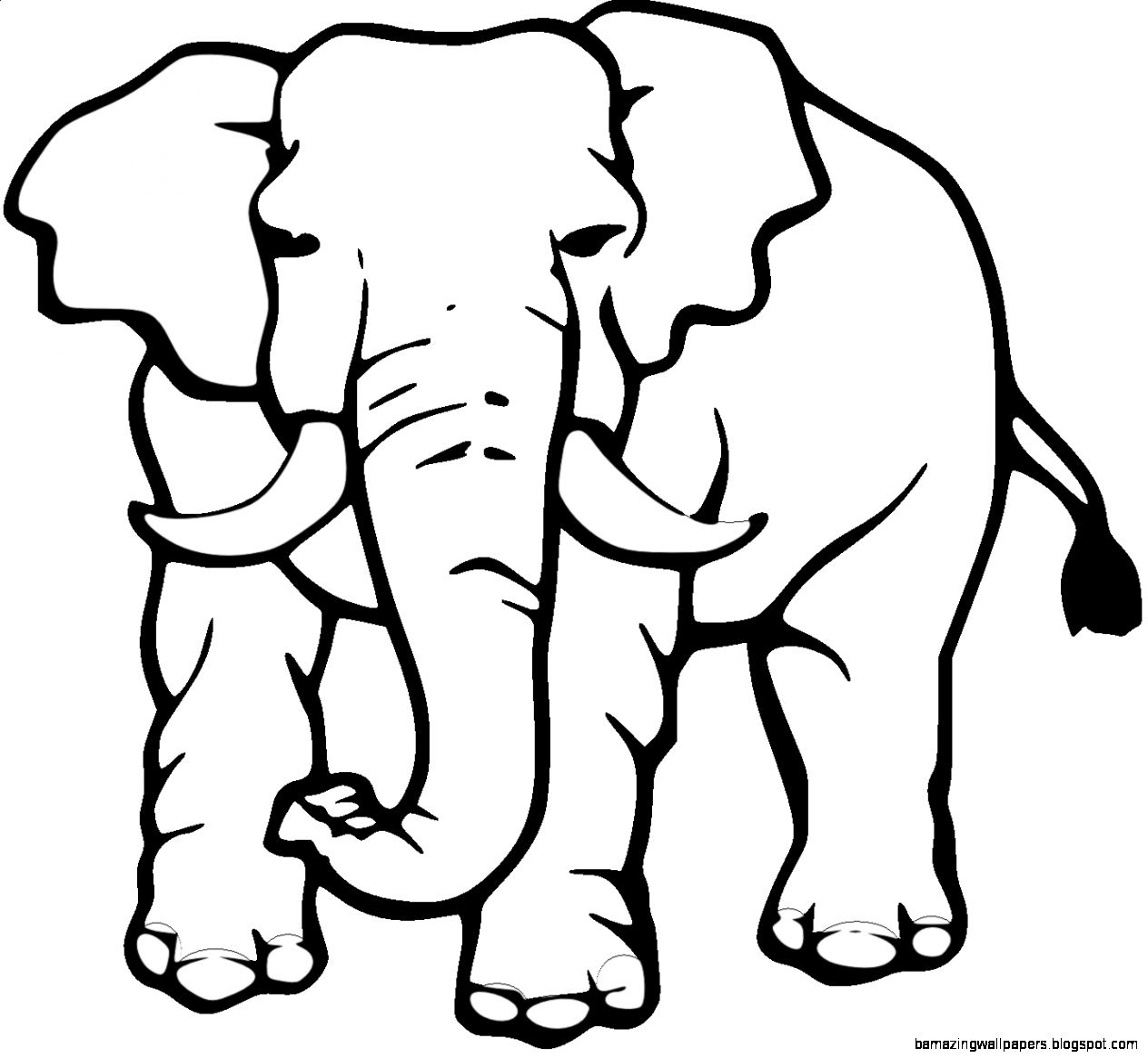 Elephant Black And White Clipart Amazing Wallpapers