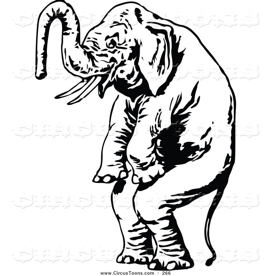 Best Cute Elephant Clipart Black and White #28173 ...