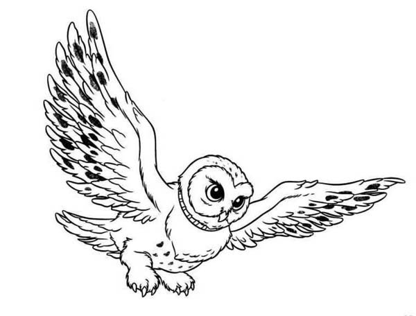 Flying Snowy Owl Clipart Free