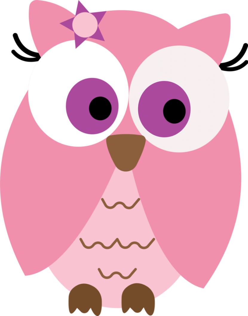Free Owl Images