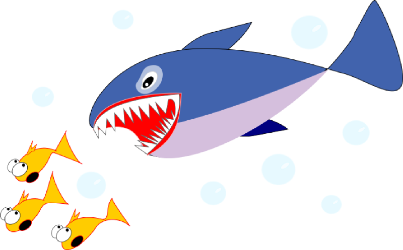 Free To Use Shark