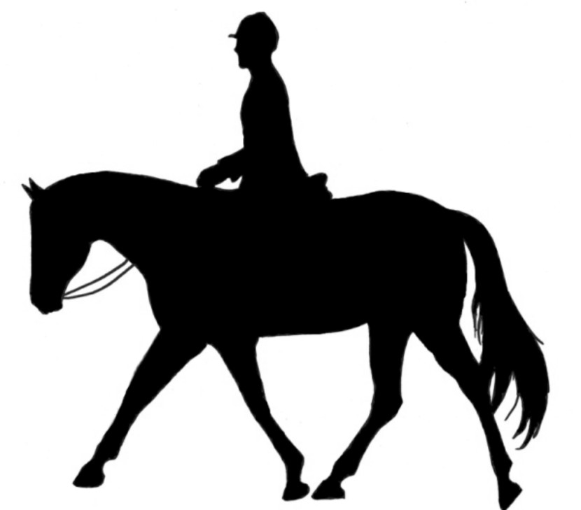 Horseback Riding Horse Clipart